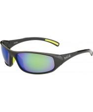 Bolle Crest lucidi occhiali da sole di smeraldo antracite marrone