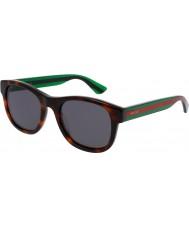 Gucci Mens gg0003s avana occhiali da sole verdi