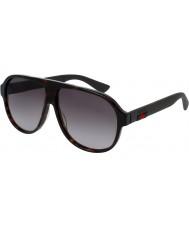 Gucci Mens gg0009s avana occhiali da sole marroni