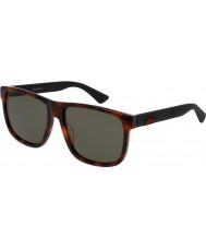 Gucci Mens gg0010s avana occhiali da sole neri