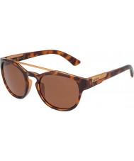 Bolle 12354 occhiali da sole tartarugati boxton