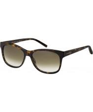 Tommy Hilfiger Th 1985 occhiali da sole di tartaruga 086 db