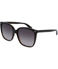 Gucci Donna gg0022s occhiali da sole avana