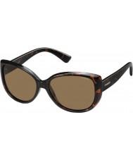 Polaroid occhiali da sole donna pld4031-s ig q3v avana scuro polarizzati