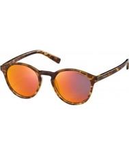 Polaroid Pld6013-s ppt oz biondi avana occhiali da sole polarizzati