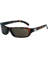 Bolle Fang occhiali da sole TNS tartaruga scuro