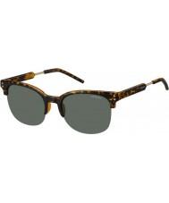 Polaroid pld2031-S Mens nho rc avana oro occhiali da sole polarizzati