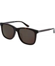Gucci Mens gg0078sk avana grigio occhiali da sole