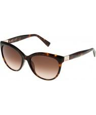 Furla Donne Zizi su4896s-743 lucidi occhiali da sole avana-giallo marrone