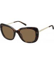 Polaroid Donna pld4044-S nho ig avana oro occhiali da sole polarizzati