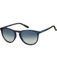 Polaroid Pld6003-n sec z7 Havana Blue occhiali da sole polarizzati