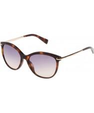 Furla Donna Stella su4961-04ap giallo occhiali da sole marroni avana-scuro