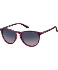 Polaroid occhiali da sole Pld6003-n SRR q2 avana fucsia polarizzati