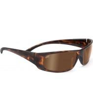 Serengeti Fasano tartaruga scuro occhiali da sole polarizzati driver di dottorato oro