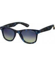 Polaroid Pld6009-nm sec Z7 avana blu occhiali da sole polarizzati
