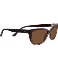 Serengeti Sophia di tartaruga neri driver occhiali da sole polarizzati