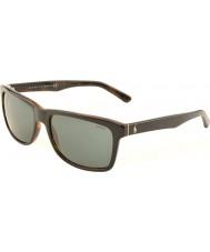 Polo Ralph Lauren Ph4098 57 casuale superiore vivente nero su Jerry testuggine 526087 occhiali da sole