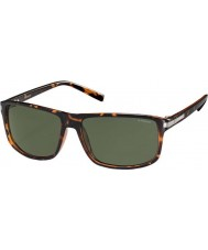 Polaroid occhiali da sole Pld2019-s PZO h8 avana polarizzati